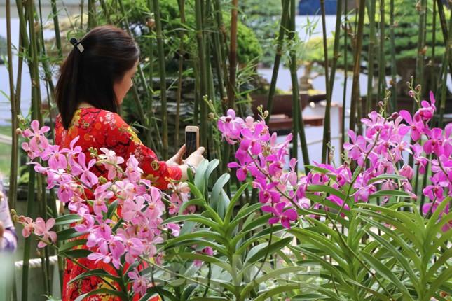 Dân Sài Gòn kéo nhau vào hội hoa xuân chụp hình 'tự sướng' ngày cận tết ảnh 7