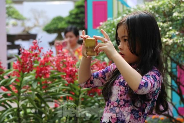 Dân Sài Gòn kéo nhau vào hội hoa xuân chụp hình 'tự sướng' ngày cận tết ảnh 8