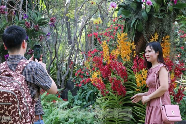 Dân Sài Gòn kéo nhau vào hội hoa xuân chụp hình 'tự sướng' ngày cận tết ảnh 10