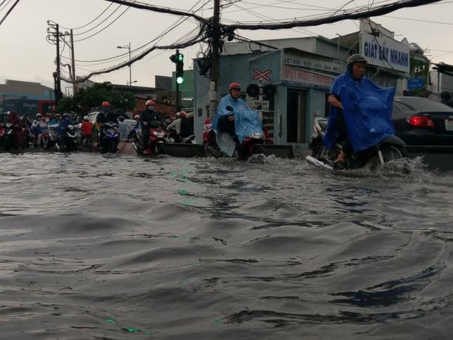 Cây đổ, đường phố Sài Gòn mênh mông nước sau trận mưa cực lớn ảnh 1