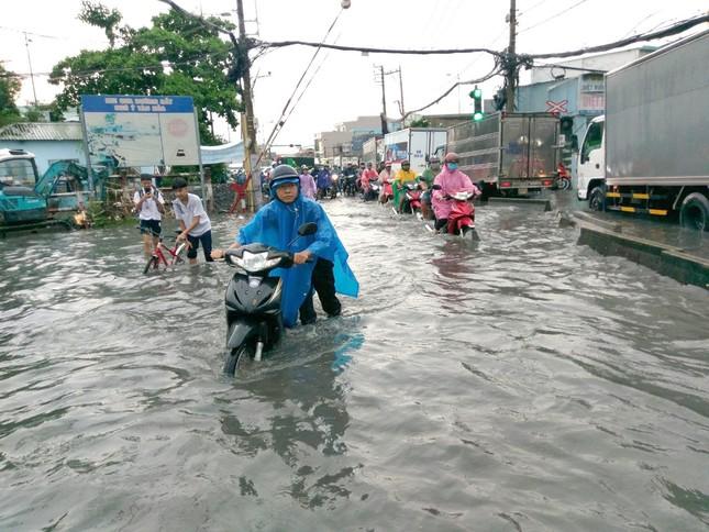 Cây đổ, đường phố Sài Gòn mênh mông nước sau trận mưa cực lớn ảnh 2