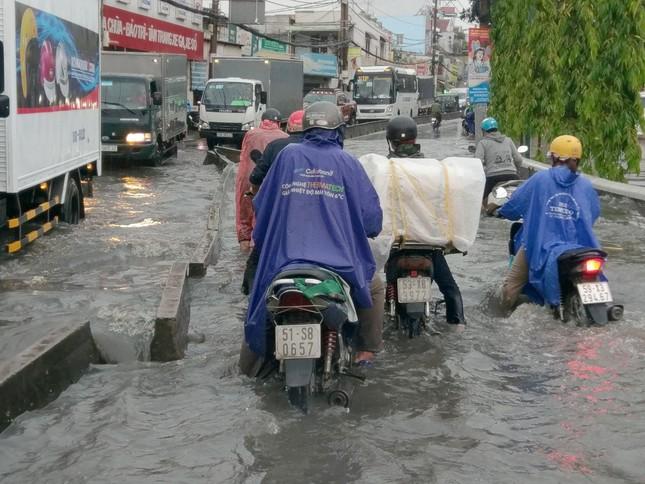Cây đổ, đường phố Sài Gòn mênh mông nước sau trận mưa cực lớn ảnh 5