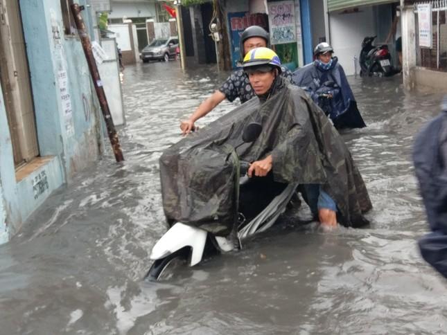 Cây đổ, đường phố Sài Gòn mênh mông nước sau trận mưa cực lớn ảnh 6