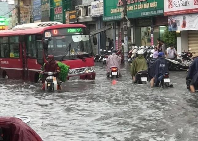 Cây đổ, đường phố Sài Gòn mênh mông nước sau trận mưa cực lớn ảnh 7