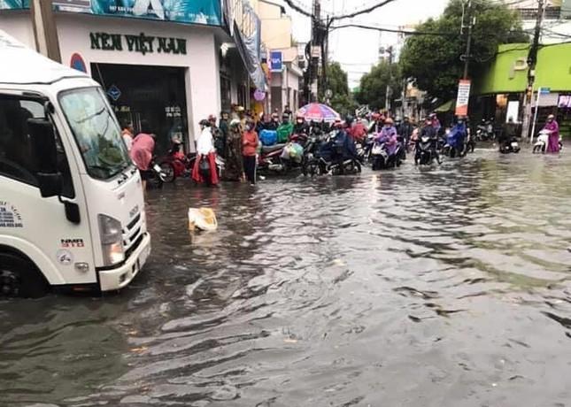Cây đổ, đường phố Sài Gòn mênh mông nước sau trận mưa cực lớn ảnh 8