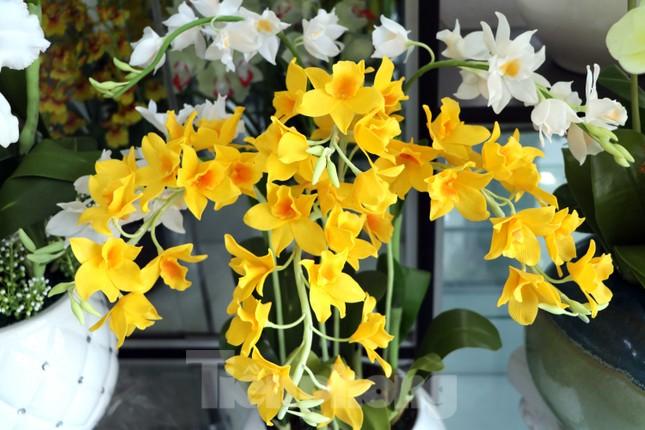 Gặp gia đình nghệ nhân ba đời làm hoa đất sét ở TPHCM ảnh 9