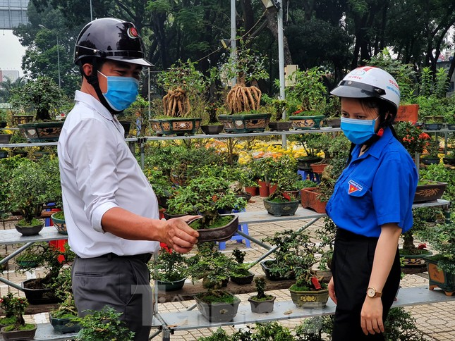 Bonsai mini 'độc lạ' tiền triệu hút khách tại chợ hoa Tết ảnh 6