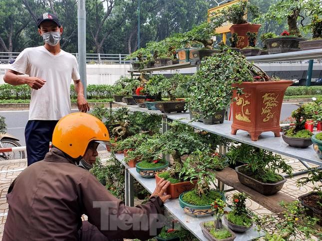 Bonsai mini 'độc lạ' tiền triệu hút khách tại chợ hoa Tết ảnh 11