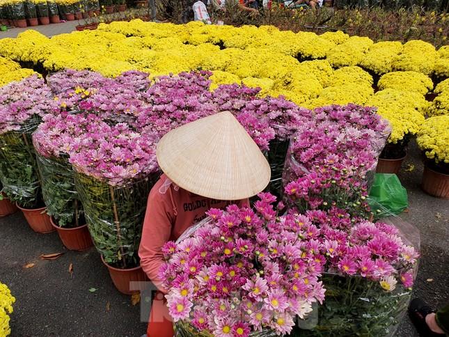 Bonsai mini 'độc lạ' tiền triệu hút khách tại chợ hoa Tết ảnh 2