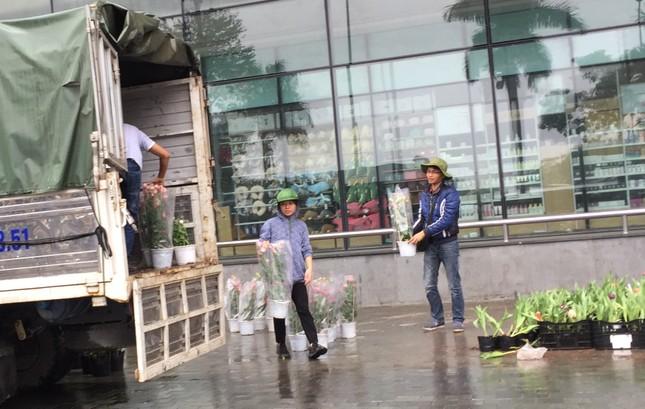 Chiều 30 Tết: Dân thủ đô đội mưa mua hoa 'giá bèo' ảnh 11