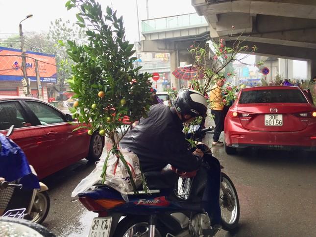 Chiều 30 Tết: Dân thủ đô đội mưa mua hoa 'giá bèo' ảnh 8