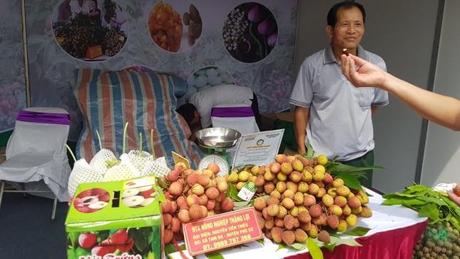 Vào hè, trái cây vùng miền đổ bộ hội chợ trái cây, nông sản Hà Nội ảnh 1