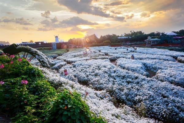 Sai phạm đất đai tràn lan ở 'Thung lũng hoa Hồ Tây' ảnh 2
