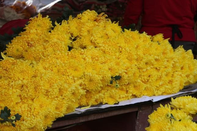 Người trồng hoa, buôn hoa Tết lo ế vì dịch COVID-19 ảnh 5