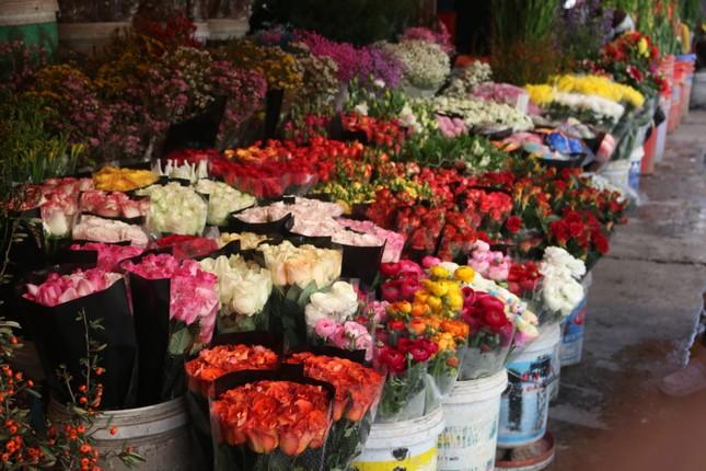 Người trồng hoa, buôn hoa Tết lo ế vì dịch COVID-19 ảnh 1