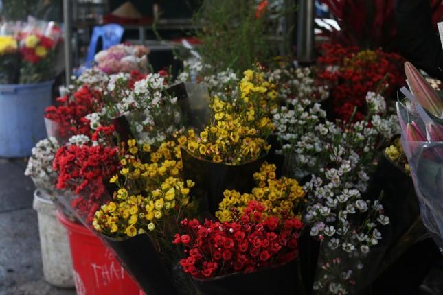 Người trồng hoa, buôn hoa Tết lo ế vì dịch COVID-19 ảnh 8