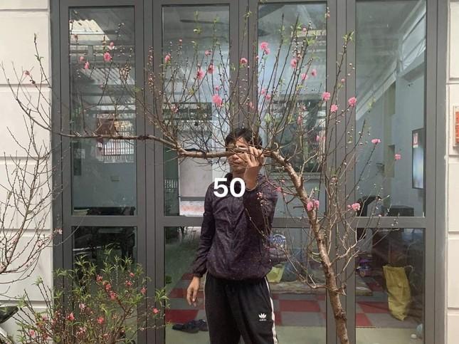 Tiểu thương đua nhau livestream rao bán cây lạ, hoa đẹp ảnh 1