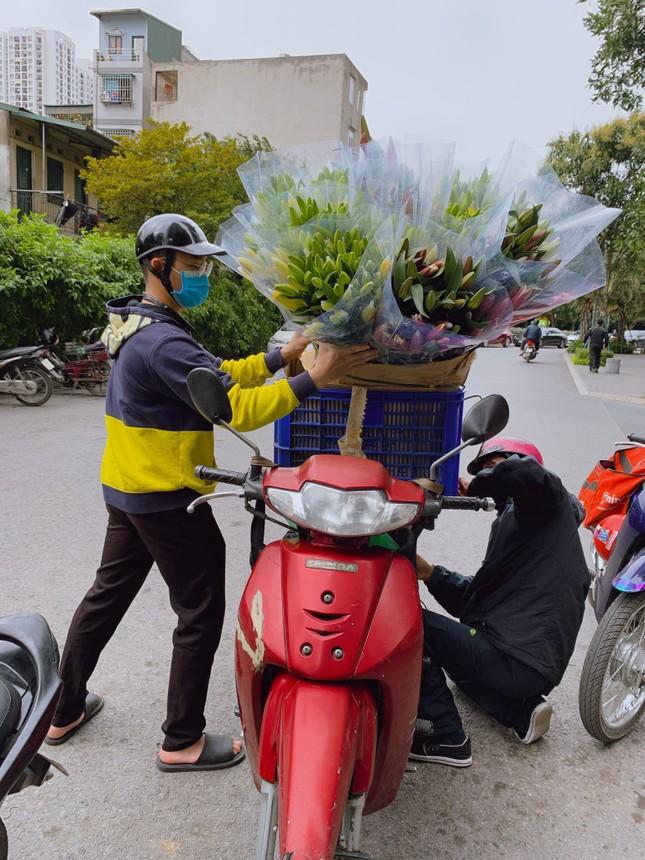 Hoa ly rớt giá thê thảm, cộng đồng mạng kêu gọi 'giải cứu' ảnh 6