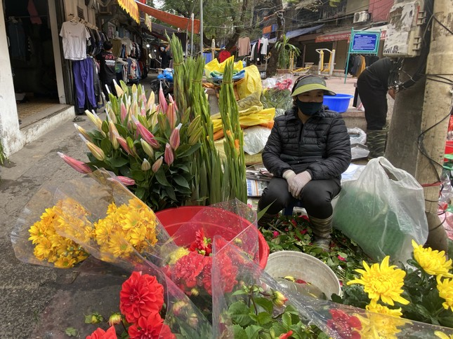 Sát Rằm tháng Giêng, giá hoa ở Hà Nội thấp lạ thường ảnh 3