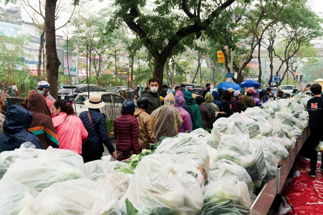 Người Hà Nội đội mưa 'giải cứu' hàng chục tấn nông sản ảnh 1