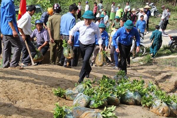 Tuổi trẻ Yên Bái ra quân trồng 100ha chè Shan tuyết ảnh 1