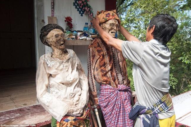 Rùng mình với mộ cây hài nhi ở rừng già Indonesia ảnh 6