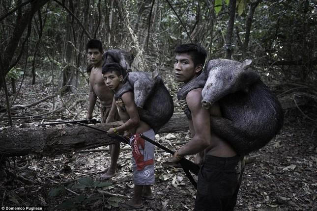 Hé lộ về bộ tộc kỳ lạ cho động vật uống… sữa người ảnh 5