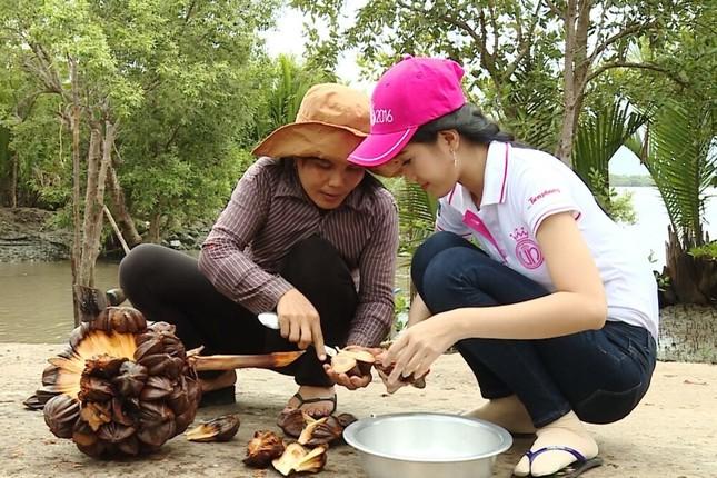 Thí sinh HHVN 2016 Thu Thảo nhận dự án lúc nửa đêm ảnh 5