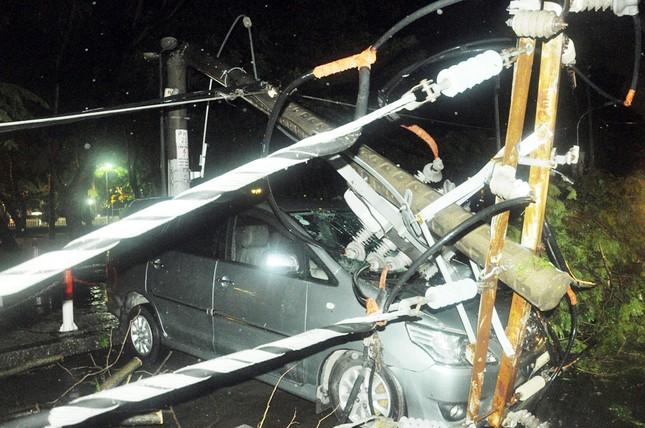 TPHCM: Cây ngã trong cơn mưa, 7 ô tô bị đè bẹp ảnh 2