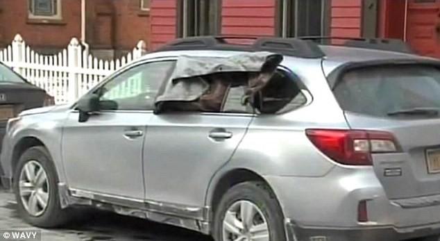 Cảnh sát phá cửa kính ôtô giải cứu... hình nộm cụ bà ảnh 3