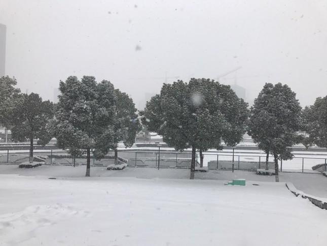 Tuyết phủ trắng xóa sân vận động trước chung kết U23 châu Á ảnh 11