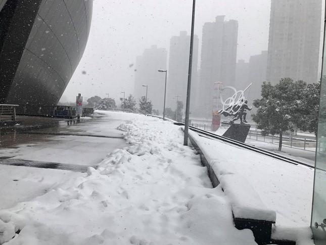 Tuyết phủ trắng xóa sân vận động trước chung kết U23 châu Á ảnh 8