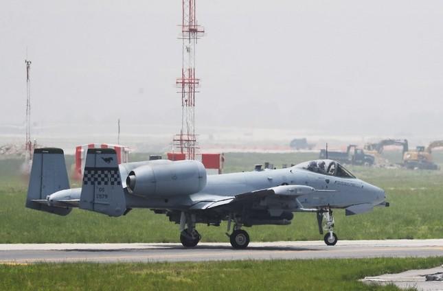 'Chim săn mồi' F-22 Mỹ tham gia cuộc tập trận bị Triều Tiên phản đối ảnh 6