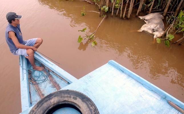 Rùng mình những vụ xả thải gây ô nhiễm nước trên thế giới ảnh 14