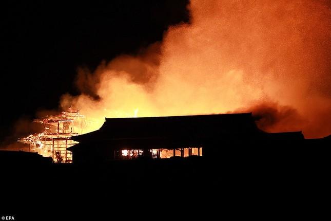 Dân Nhật bàng hoàng nhìn lâu đài 600 năm tuổi bị lửa thiêu rụi ảnh 3