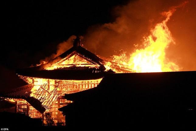 Dân Nhật bàng hoàng nhìn lâu đài 600 năm tuổi bị lửa thiêu rụi ảnh 5