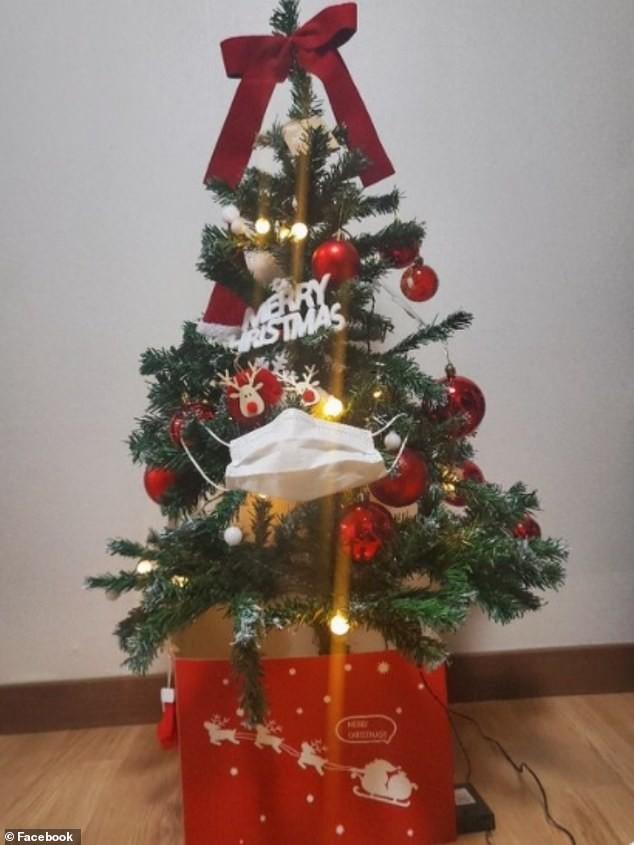 Treo khẩu trang, giấy vệ sinh lên cây thông Noel vì 'ám ảnh' với COVID-19 ảnh 2