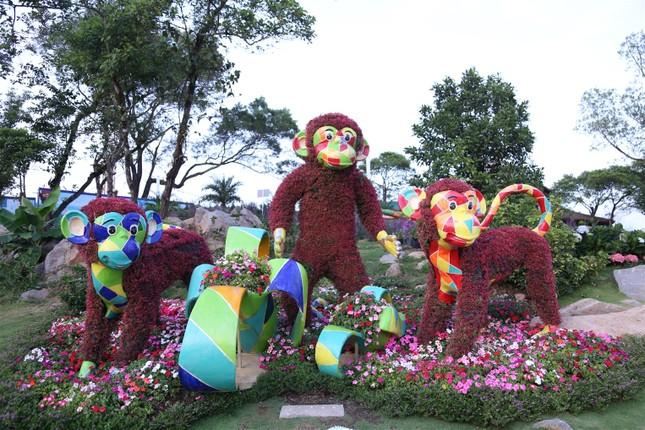 Ngắm nhìn Núi Bà Tây Ninh đẹp vi diệu những ngày đầu xuân ảnh 5