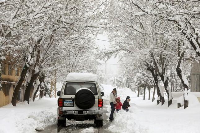 Hài hước cảnh lạc đà ngơ ngác khi thấy tuyết rơi ở Ả Rập Saudi ảnh 8