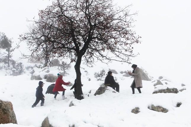 Hài hước cảnh lạc đà ngơ ngác khi thấy tuyết rơi ở Ả Rập Saudi ảnh 9