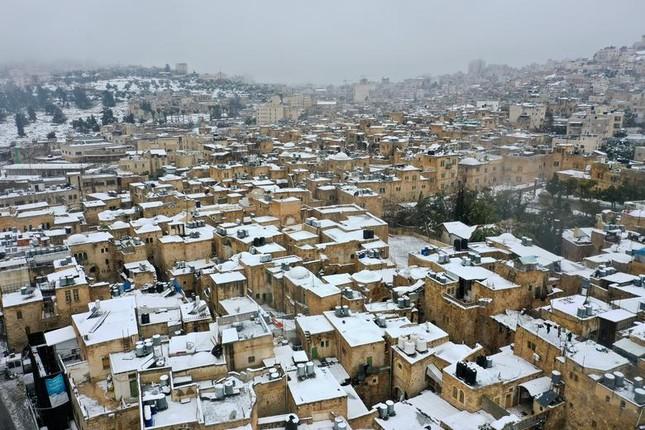 Hài hước cảnh lạc đà ngơ ngác khi thấy tuyết rơi ở Ả Rập Saudi ảnh 6