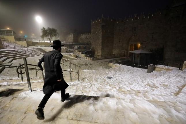 Hài hước cảnh lạc đà ngơ ngác khi thấy tuyết rơi ở Ả Rập Saudi ảnh 5
