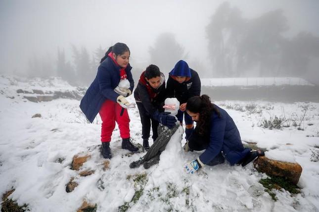 Hài hước cảnh lạc đà ngơ ngác khi thấy tuyết rơi ở Ả Rập Saudi ảnh 3