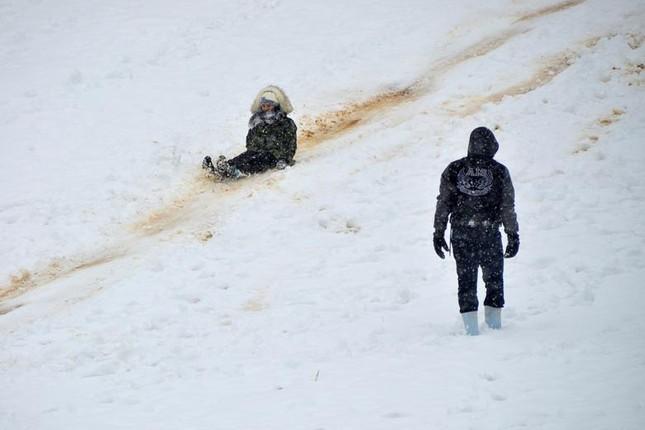 Hài hước cảnh lạc đà ngơ ngác khi thấy tuyết rơi ở Ả Rập Saudi ảnh 2