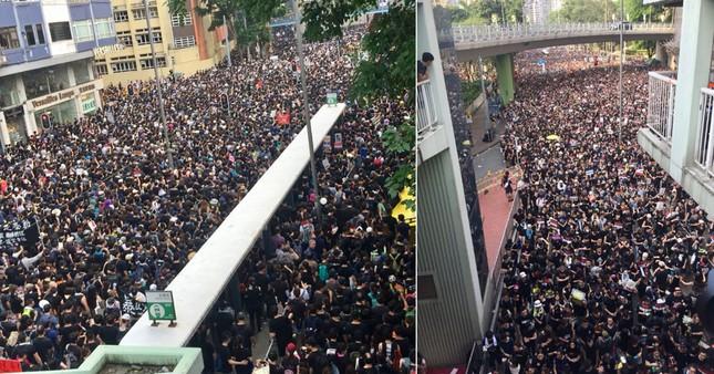 Hong Kong: Số người biểu tình tăng kỷ lục, thủ lĩnh 'Cách mạng ô' ra tù ảnh 2