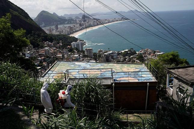 Brazil cực nhọc vật lộn với COVID-19 ảnh 8