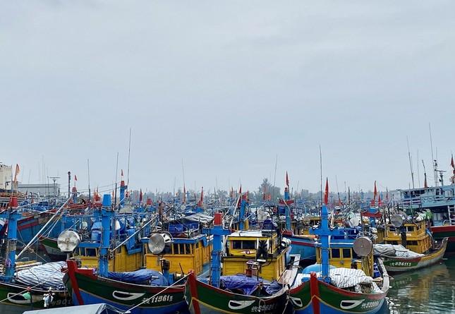 Hàng trăm du khách vội vã rời đảo Lý Sơn để tránh bão số 5 ảnh 6