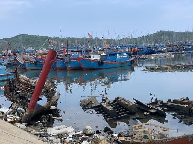 Nhếch nhác 'nghĩa địa' tàu cá tiền tỉ ở cảng Sa Huỳnh ảnh 6