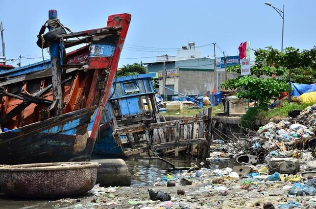 Nhếch nhác 'nghĩa địa' tàu cá tiền tỉ ở cảng Sa Huỳnh ảnh 12