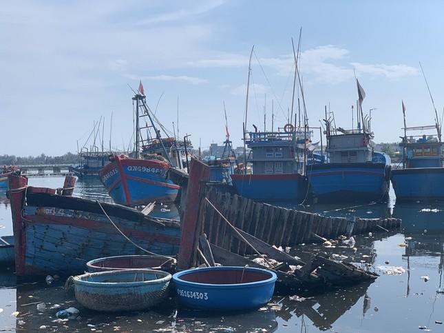 Nhếch nhác 'nghĩa địa' tàu cá tiền tỉ ở cảng Sa Huỳnh ảnh 11